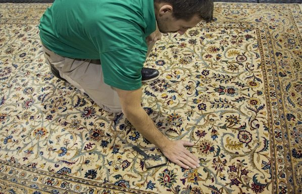 Carpet Cleaning Tampa Fl Tampa Carpet Cleaners